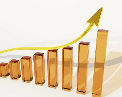 Comment  investir  en  bourse: mes  connaissances