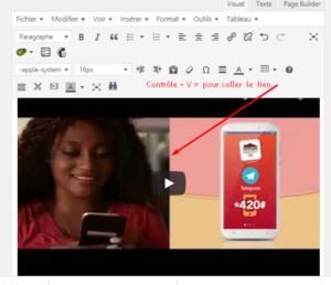 ajouter une vidéo youtube dans un article wordpress 3