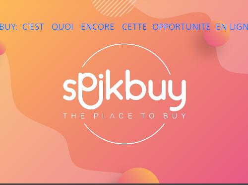 Avis spikbuy : C'est quoi encore cette opportunité en ligne ?
