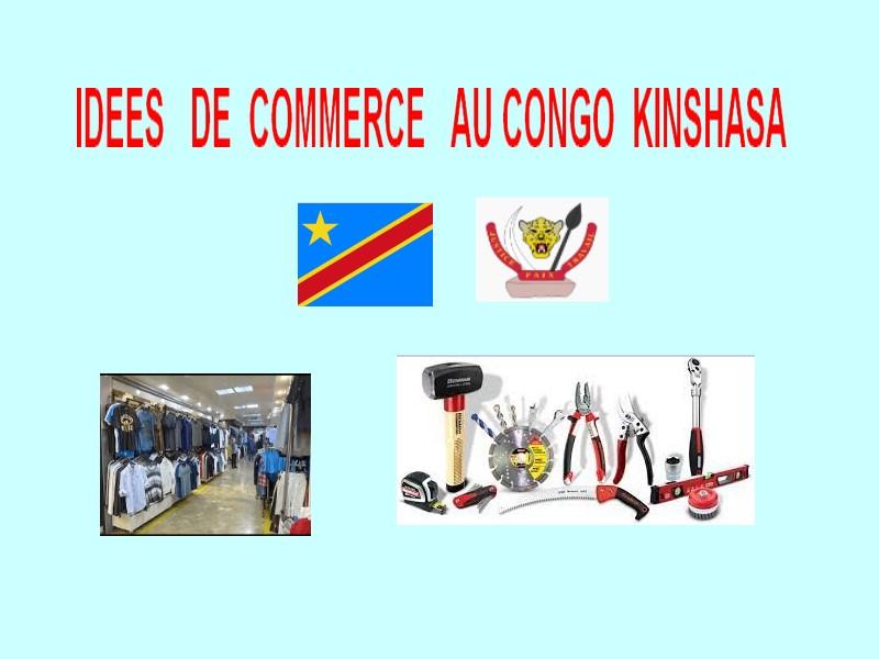 idée de commerce à faire au Congo kinshasa